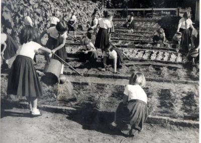 1959 - Horta Escolar